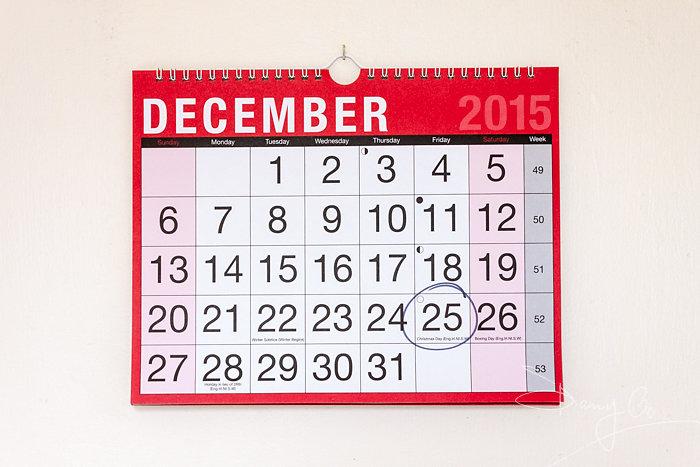 2015 monthly wall calendar